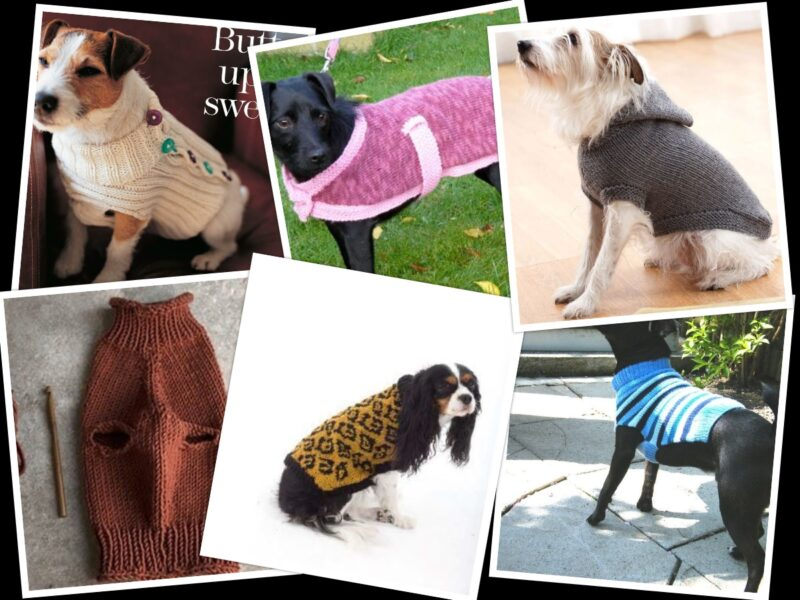 9 Dog Sweaters Knitting Patterns Free On The Internet | The Knitting Librarian